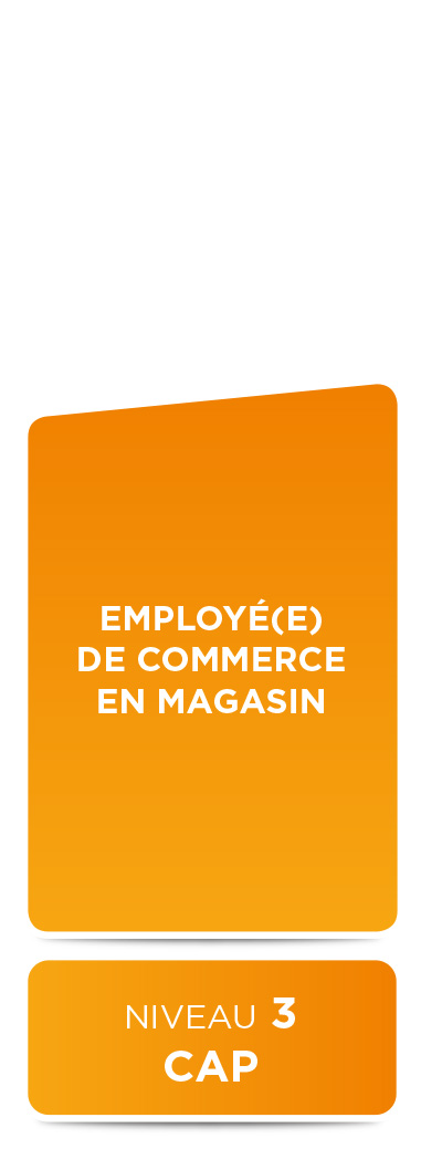 E2M • Employe de commerce (niveau 3)