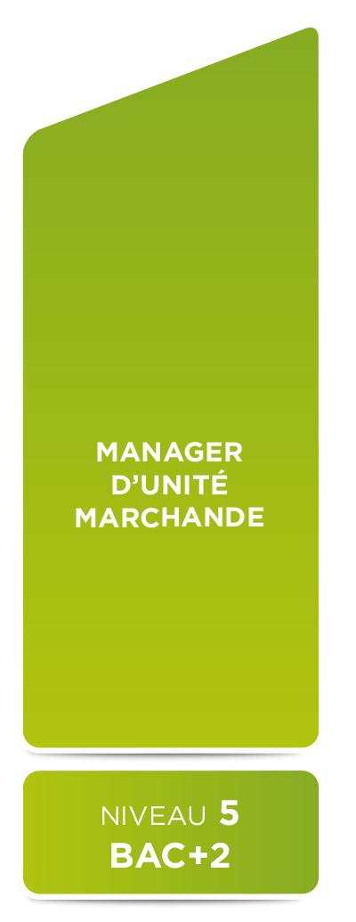 E2M • Manager d'unité marchande (niveau 5)