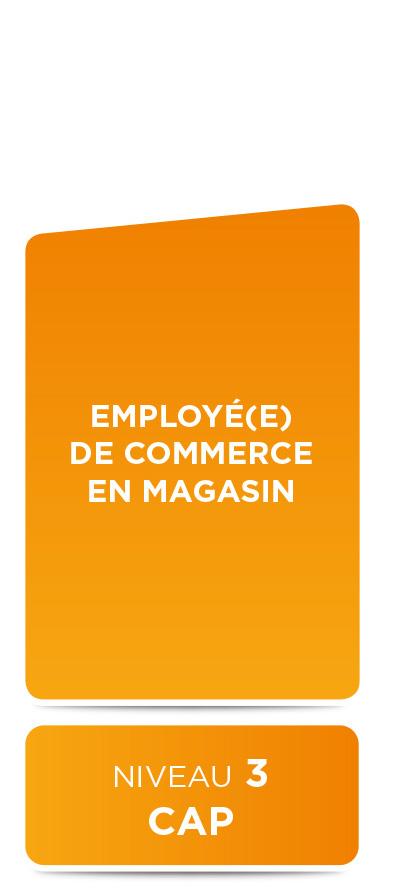 E2M • Employé de commerce en magasin • CAP
